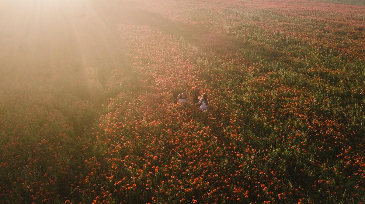zdjęcia ślubne z drona